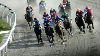【地方競馬】ジャパンダートダービー出走予定馬
