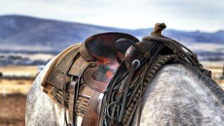 ゴールドシップ引退戦の有馬記念では未定の鞍上には誰が乗る?