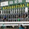 【有馬記念2015】枠順確定!ゴールドシップは8枠15番!