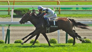 【香港スプリント】地元香港馬ペニアフォビアの勝利。ストレイトガールは9着