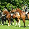 2017年の英ダービーに日本馬参戦の可能性も?現在登録されている日本人馬主の日本馬3頭を紹介