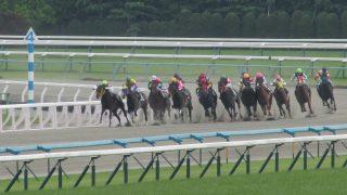 【平安S2016】ドコフクカゼ、強豪打ち破り秋の大レースへ繋げ!