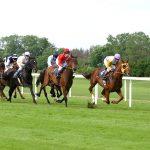horse-racing-2